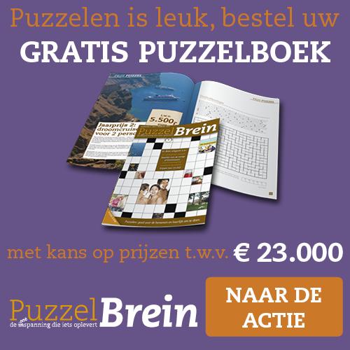 gratis puzzelboek puzzelbrein Gratis PuzzelBrein Puzzelboek